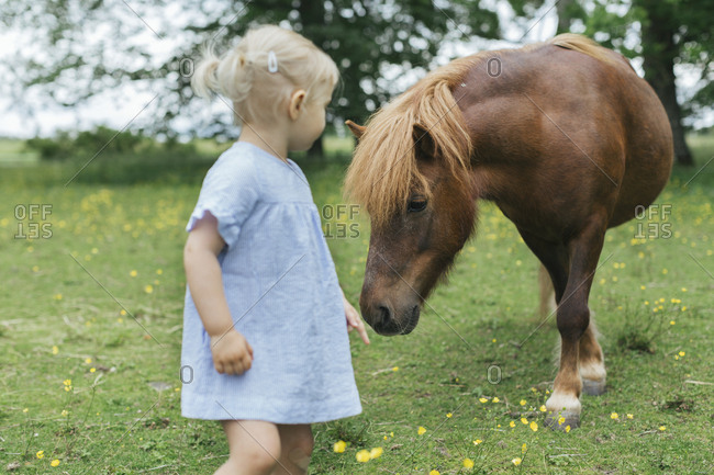 Girl looking at pony