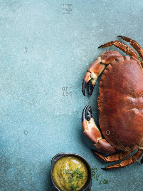 Crab on blue background