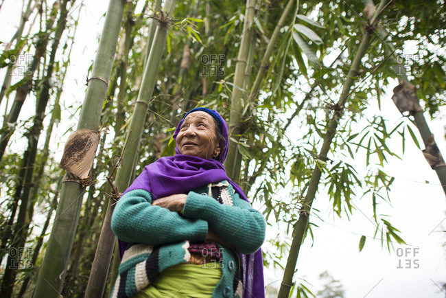 An old woman in Nepal standing among bamboo