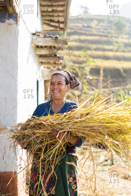 Diktel, Khotang District, Nepal - December 9, 2015: Woman with a bundle of grass collected as fodder for her animals