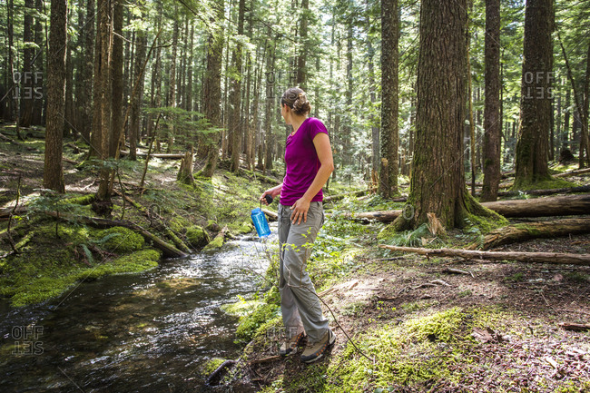 Columbia River Gorge, OR, USA. A woman stands beside a small creek in a forest with a water bottle in her head, looking behind her.