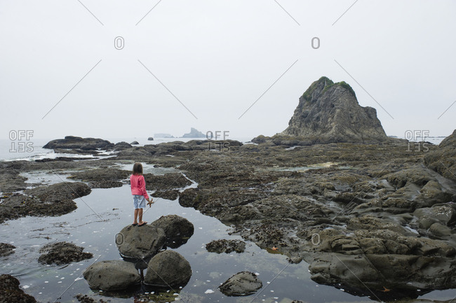 A young girl explores the tide pools along the Washington coast.