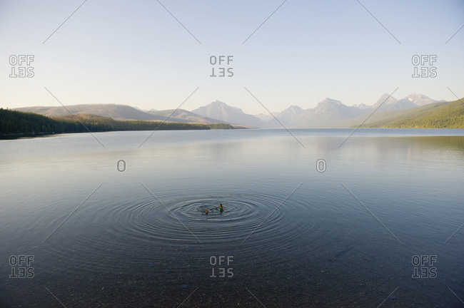 Two young girls take an evening swim in a calm mountain lake in Glacier National Park, Montana.