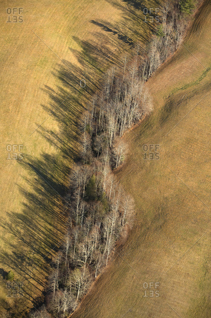 Aerial view of a pasture with a treeline throwing deep shadows near Hendersonville, NC