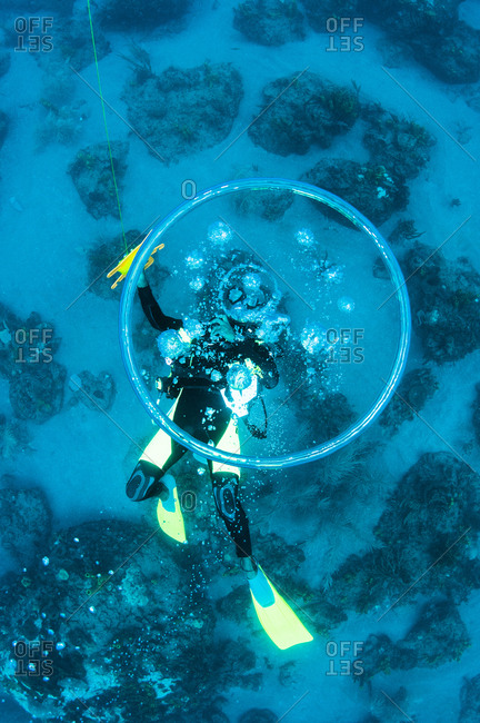 A diver blows circular bubbles from the ocean floor, St. Lucia.