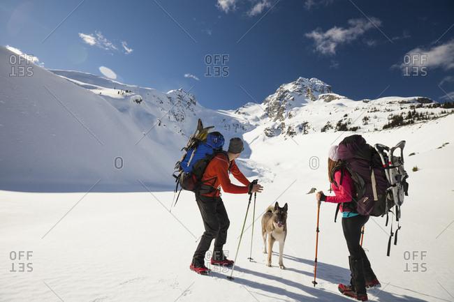 Two backpackers look up toward the summit of Joffre Peak.