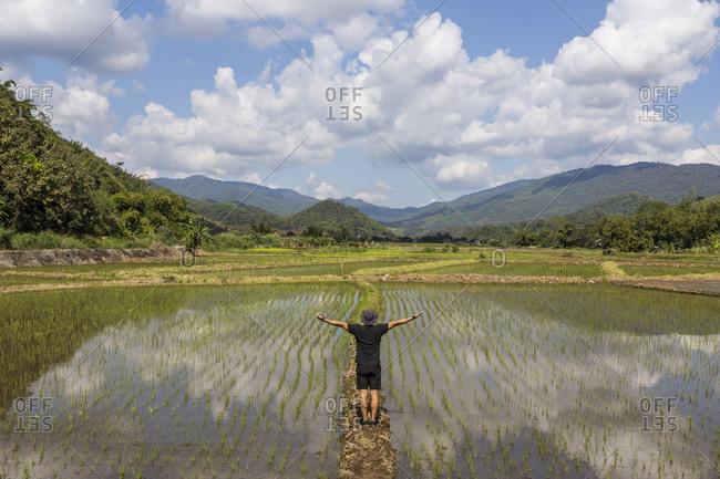 Adventurous tourist in rice paddy, Chiang Rai, Thailand