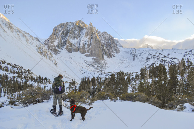 Snowshoeing to Temple Crag with man's best friend.