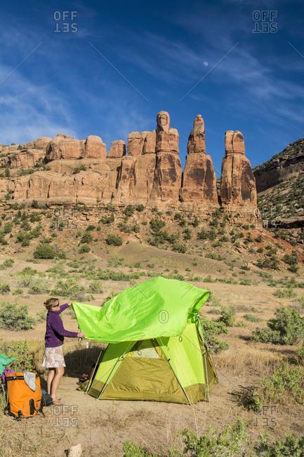 A woman setting up a tent on the Colorado River, Fruita, Colorado.