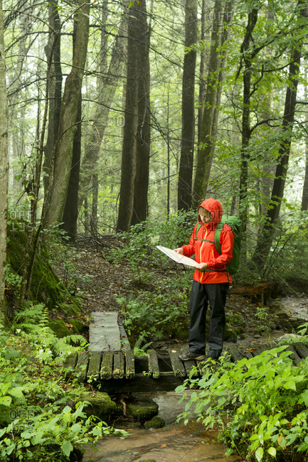 A woman hiking in  a green forest, Marshall, North Carolina.