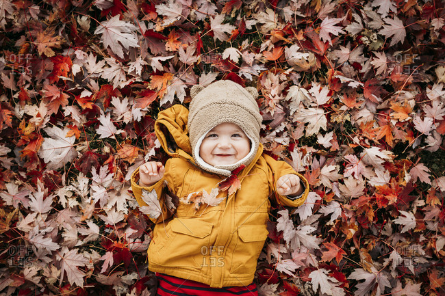 Young child playing in a pile of leaves in the fall