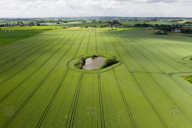 Elevated view of green fields and a pond