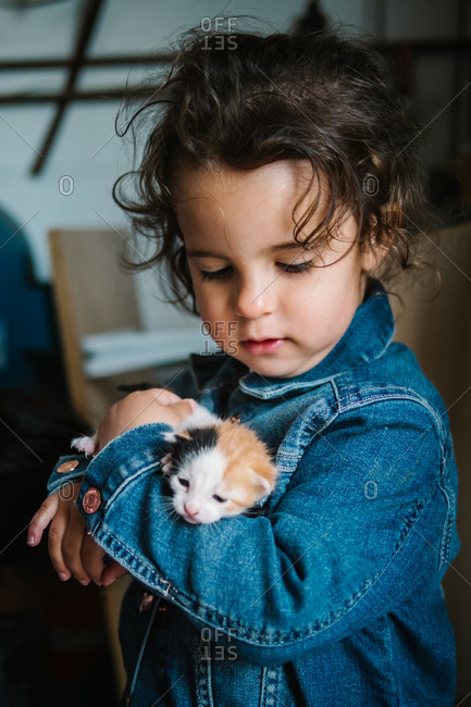 Adorable toddler girl in jean jacket holding tenderly three colored kitten at home