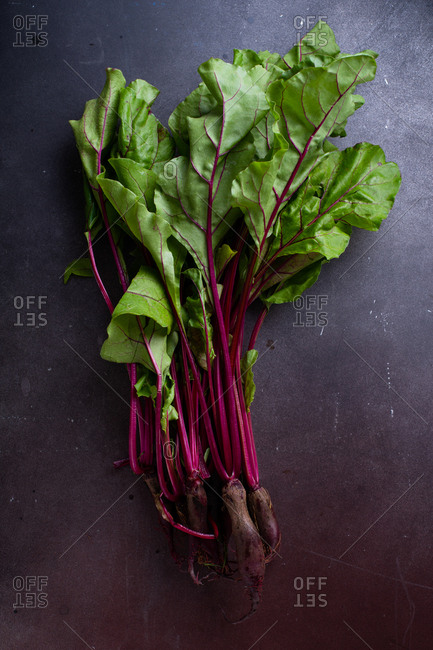 Young beetroot green tops fresh picked from the farm
