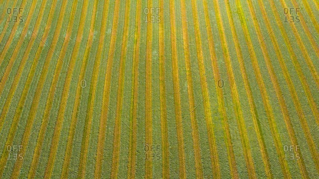 Aerial view of an agricultural field after harvest in late autumn in Naperville, IL in the United States.