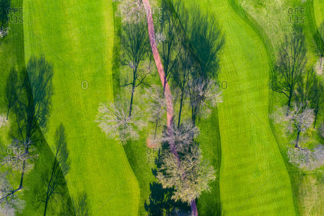 April 21, 2019: Aerial view of a treetops in early spring creating an abstract looking perspective at the Naperville Country Club in Napervile, ILUSA