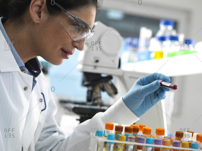Lab technician preparing a variety of human samples for medical testing in the laboratory
