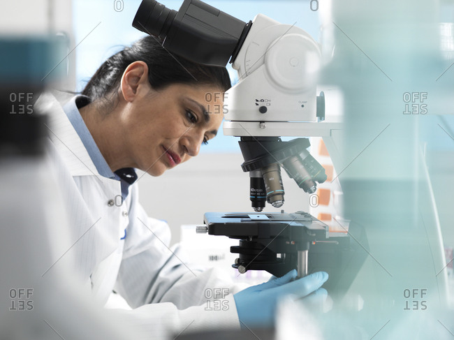 Lab technician preparing sample for analysis under a microscope in the laboratory