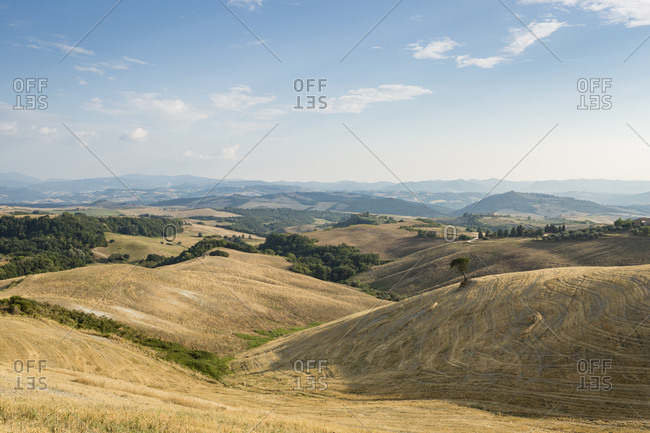 Landscape with harvested fields- Tuscany- Italy
