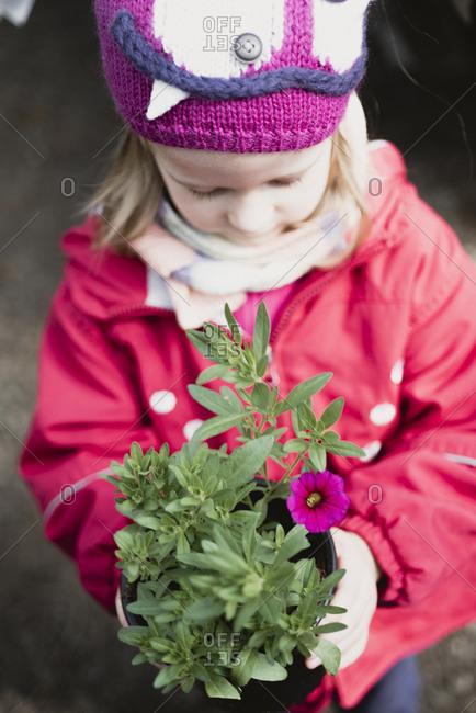 Little girl holding flower in flowerpot