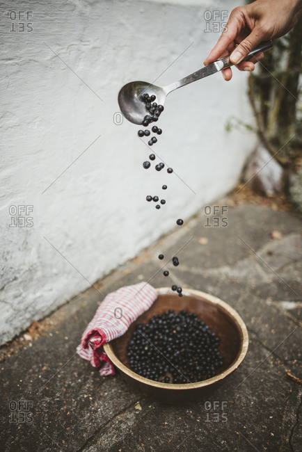 Close-up of arranging blueberries in a bowl