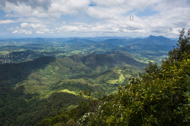 Overlook at the Springbrook National Park- New South Wales- Australia