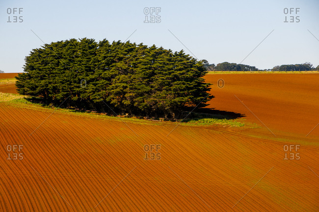 Farmland near the Wilsons Promontory National Park- Victoria- Australia