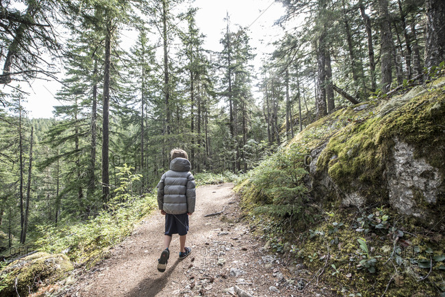 Boy hiking on trail near Ross Lake in North Cascades National Park, Washington State, USA