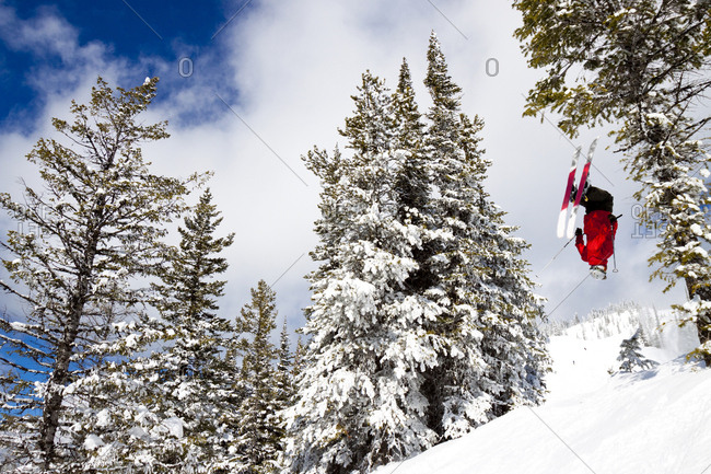 Male Skier Does A Back Flip At Whitefish Mountain Resort In Whitefish, Montana