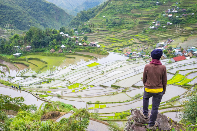 Hiker admiring Batad rice terraces in early spring planting season, Banaue, Philippines
