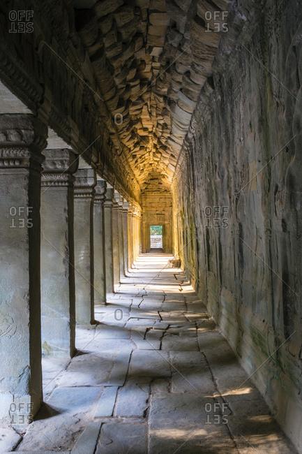 Ta Prohm temple (Rajavihara), Siem Reap, Cambodia