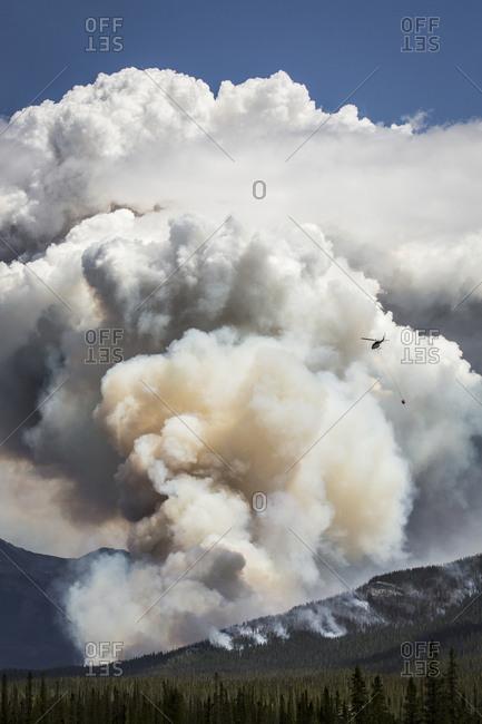 Forest Fires, Banff National Park