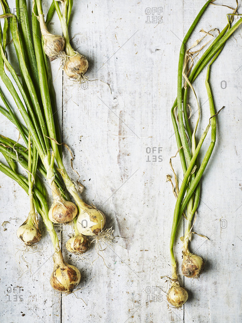 White onions on a wooden surface.