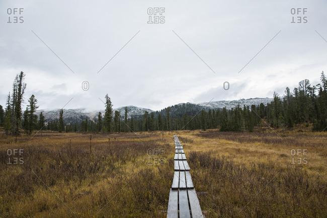 path to the unknown mountains of Ergaki National Park, Siberia