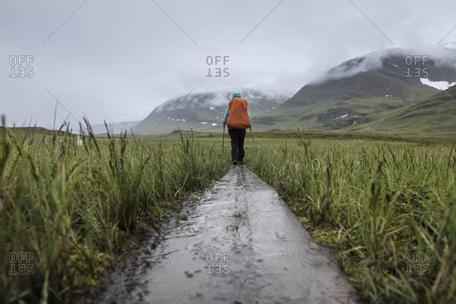 Hiker hiking in rain through grass in  near  hut, Kungsleden trail, Lapland, Sweden