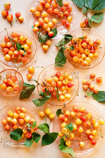 Sweet farm fresh Rainer Cherries in bowls on pink background
