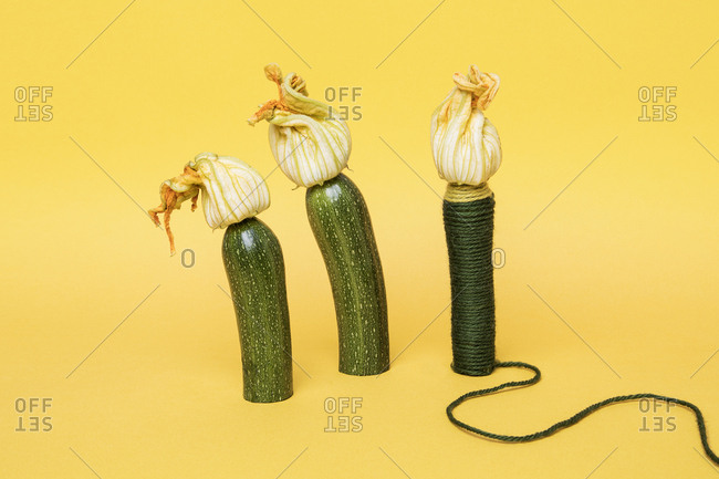 Three zucchinis one wrapped in yarn