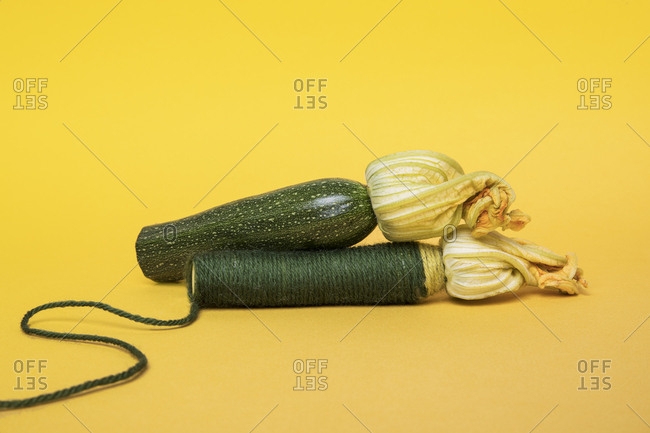 Two zucchinis one wrapped in yarn
