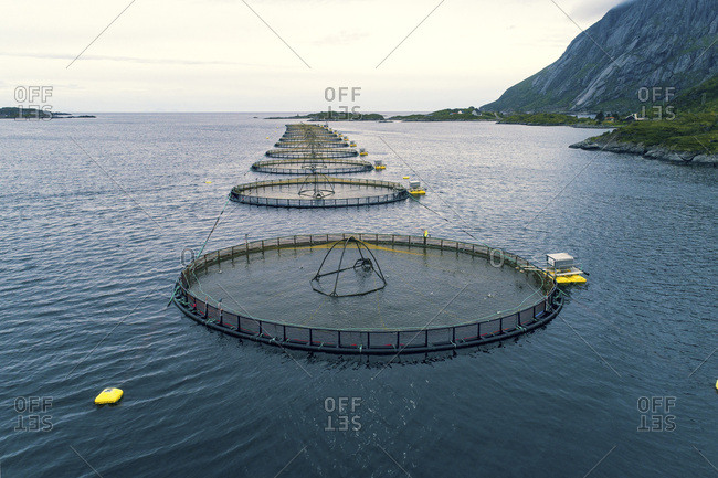 Norway, Lofoten Islands. M�lnarodden Salmon fishery