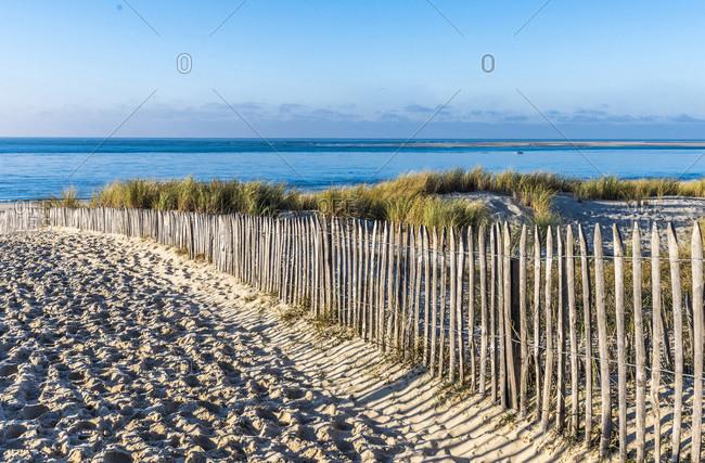 France, New Aquitaine, Arcachon Bay, Petit Nice beach, sand fences (ganivelle) against erosion