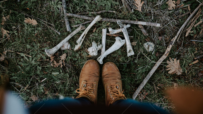 From above crop legs in brown boots and white gnawed bones spread on green grass outdoors