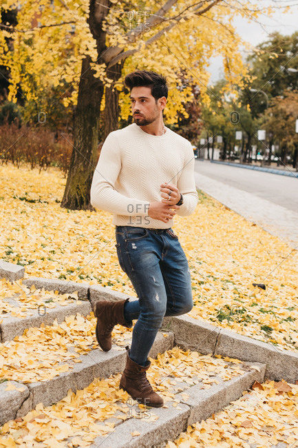 Glamorous handsome man in jeans and white sweater walking on yellow autumn leaves in city