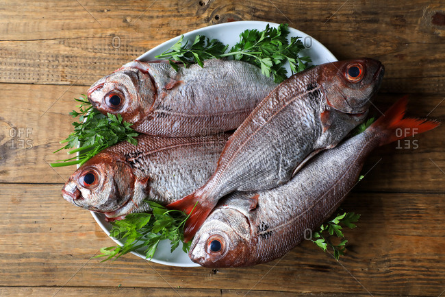 From above tasty fragrant fish decorated with parsley in white plate on wooden background