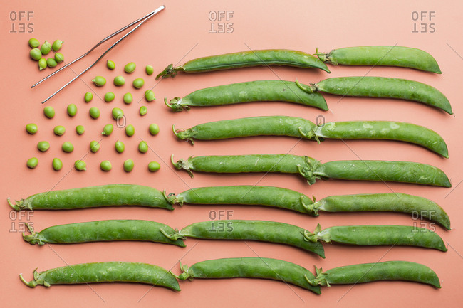 Flat lay of the USA flag made with peas and pea pods on salmon background