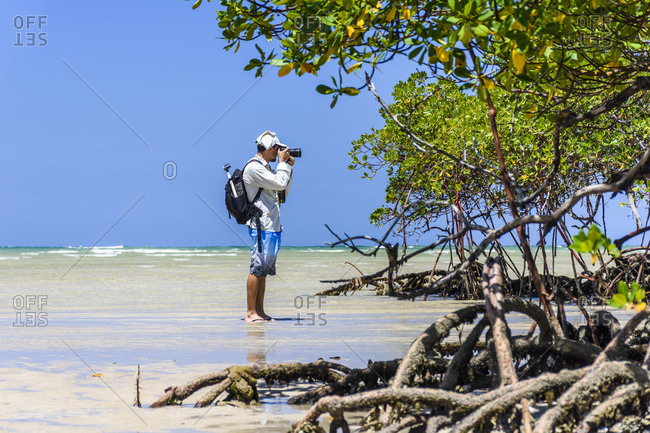 Brazil, Bahia, Morro de S���o Paulo - October 24, 2016: Photographer near mangrove trees on tropical beach, Marro de Sao Paulo, Bahia, Brazil
