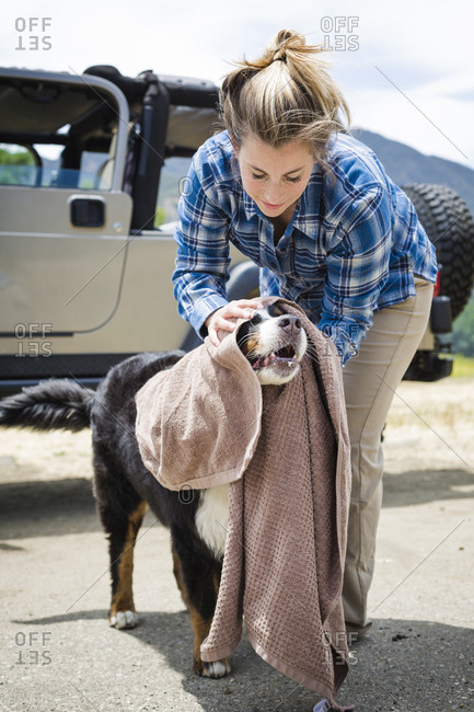 Full length of woman wiping dog with towel against vehicle