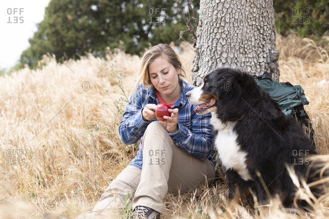 Woman cutting apple by dog against tree