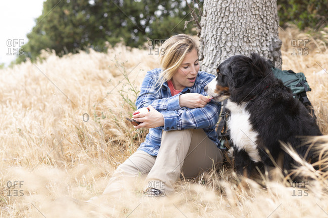 Woman feeding apple to dog against tree
