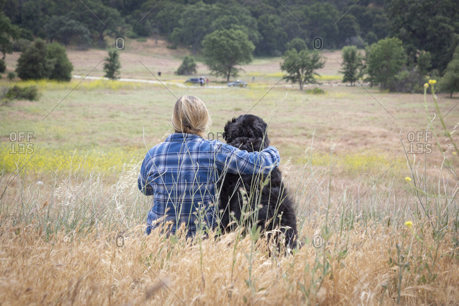 Rear view of woman sitting with arm around dog on grass