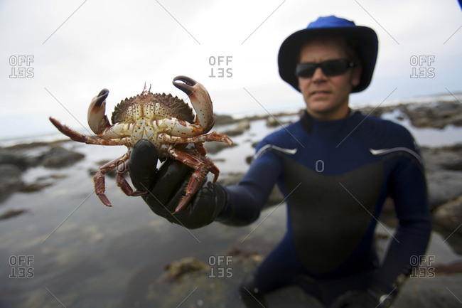A man holds a crab on The Lost Coast, California.